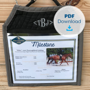 The Printable Pony Stall Card Holder Pattern