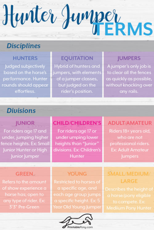 Hunter Jumper Terms by The Printable Pony