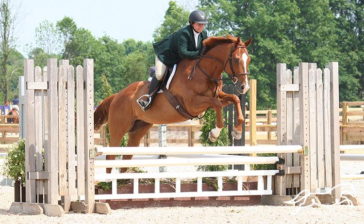 Miles Low Thoroughbred Hunters at Showtime at Willow Way