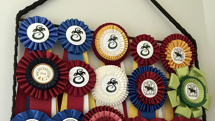 Diy Horse Show Ribbon Display Hanger The Printable Pony