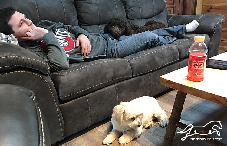Husband and pups relaxing on the couch