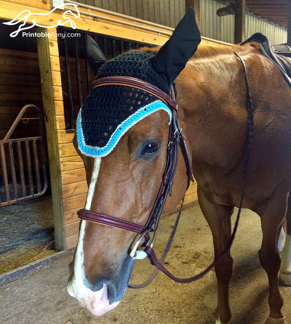 The Printable Pony Crochet Fly Bonnet on Miles