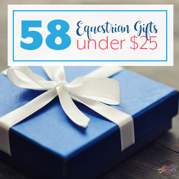 58 Equestrian Gifts Under $25