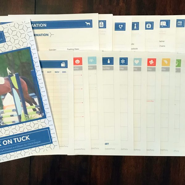Equine Records Printable Pack In Action
