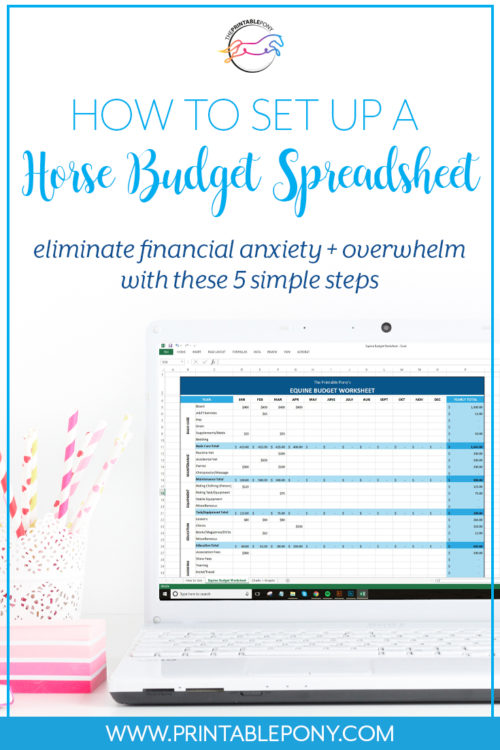 How To Set Up A Horse Budget Spreadsheet The Printable Pony